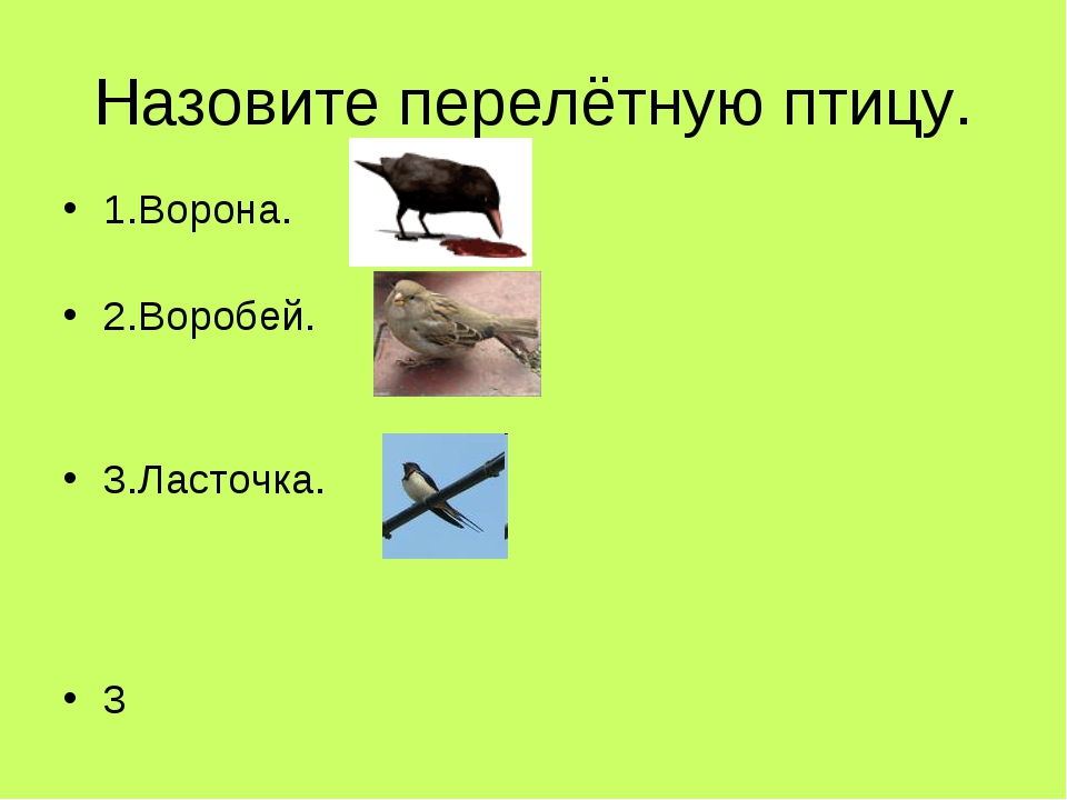 Назовите перелётную птицу. 1.Ворона. 2.Воробей. 3.Ласточка. 3