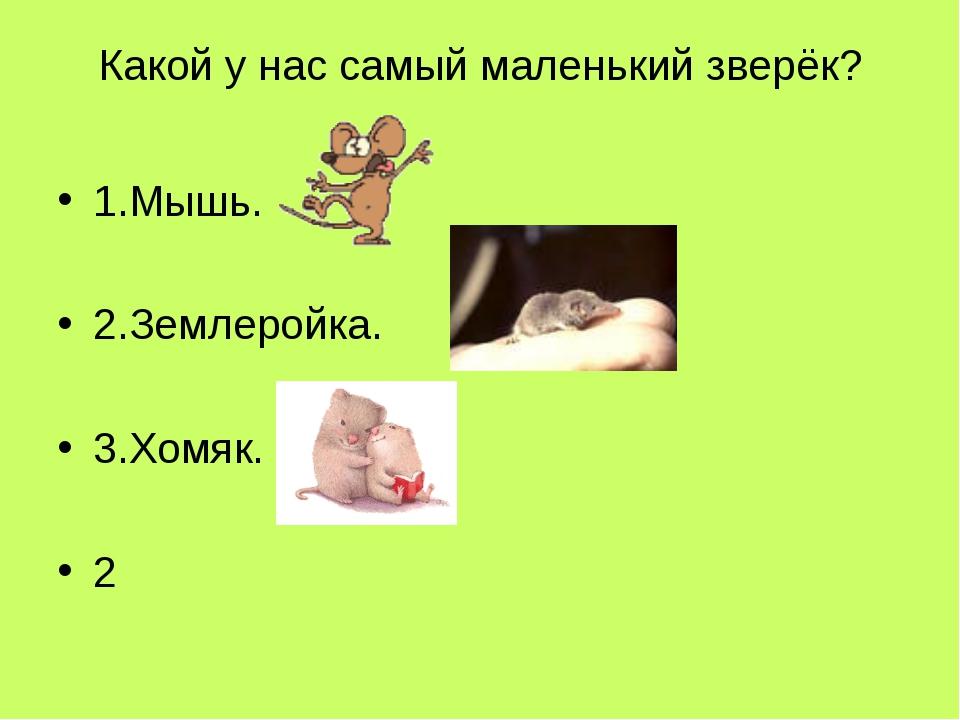 Какой у нас самый маленький зверёк? 1.Мышь. 2.Землеройка. 3.Хомяк. 2