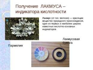 Получение ЛАКМУСА – индикатора кислотности Пармелия Лакмусовая бумага Лакмус