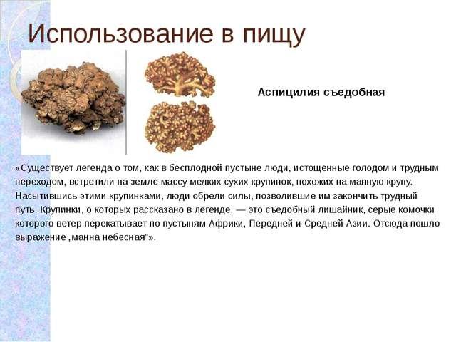 Использование в пищу «Существует легенда о том, как в бесплодной пустыне люди...