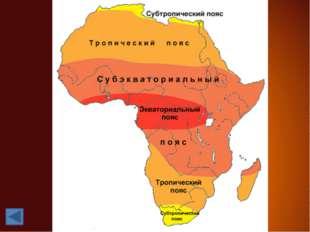 Центральная Африка и прибрежные районы Гвинейского залива относятся к экватор