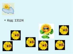 Код: 13124