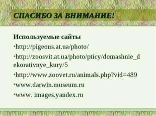 СПАСИБО ЗА ВНИМАНИЕ! Используемые сайты http://pigeons.at.ua/photo/ http://zo