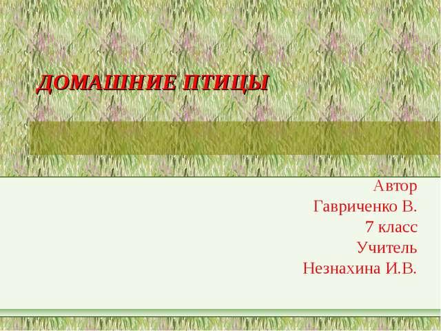ДОМАШНИЕ ПТИЦЫ Автор Гавриченко В. 7 класс Учитель Незнахина И.В.