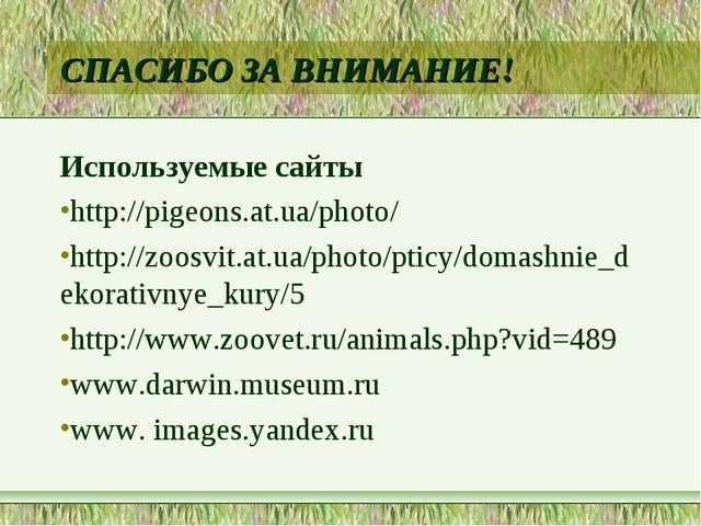 СПАСИБО ЗА ВНИМАНИЕ! Используемые сайты http://pigeons.at.ua/photo/ http://zo...