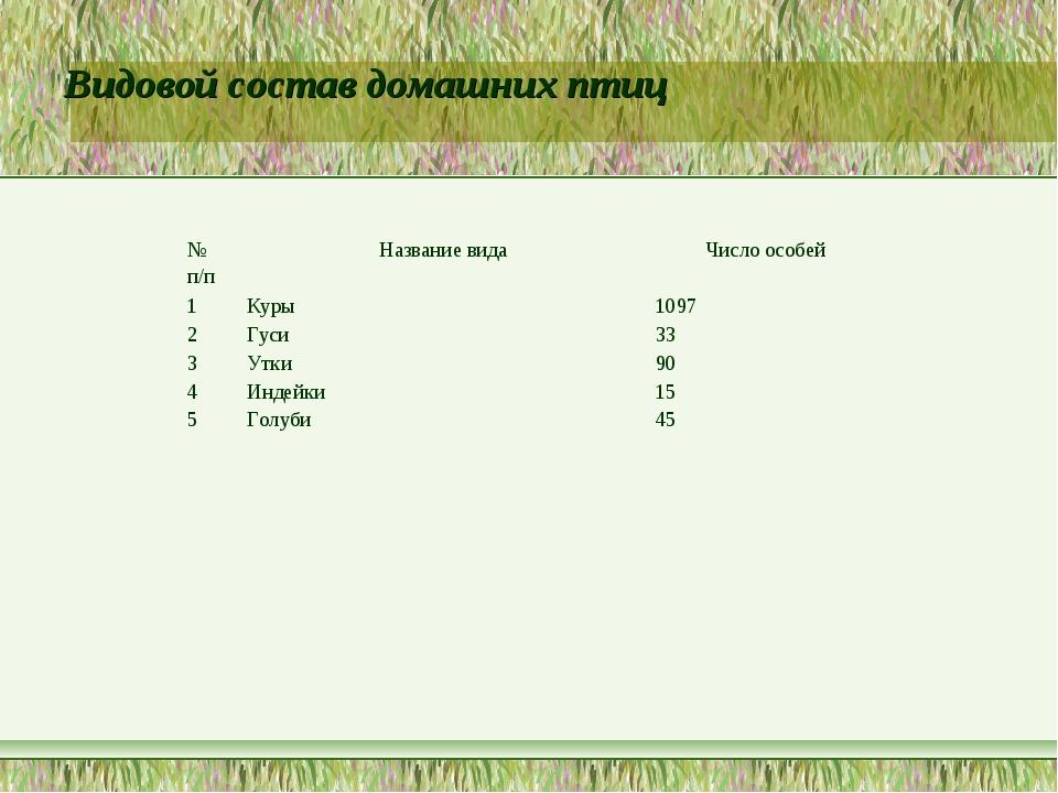 Видовой состав домашних птиц № п/пНазвание видаЧисло особей 1Куры 1097 2...