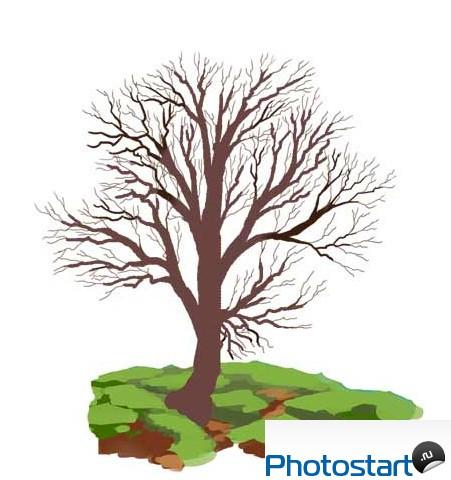 Как нарисовать дерево без листьев Учитесь рисовать