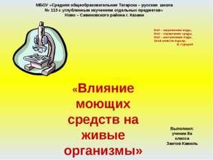 МБОУ «Средняя общеобразовательная Татарска – русская школа № 113 с углубленны
