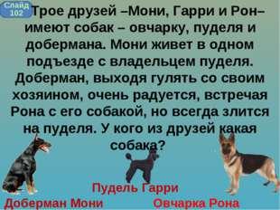 Пудель Гарри Доберман Мони Овчарка Рона Слайд 102 Трое друзей –Мони, Гарри и