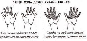 http://im2-tub-ru.yandex.net/i?id=3be6492c84edb9cd87991ab6e1cf3c22-04-144&n=21