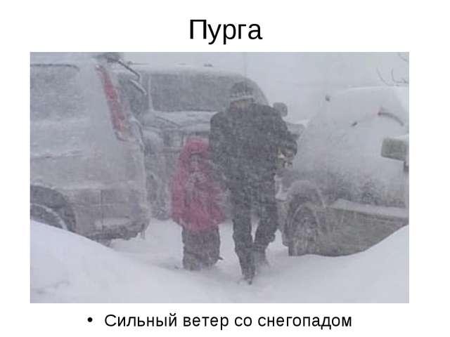 Пурга Сильный ветер со снегопадом