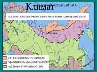 В каком климатическом поясе расположен Приморский край?