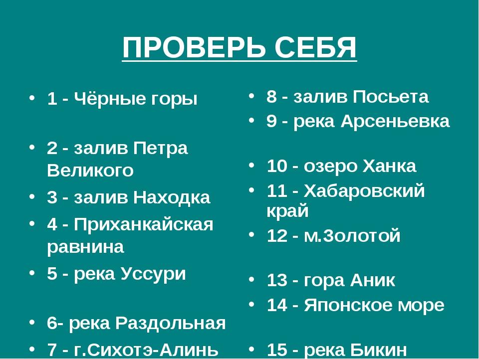 ПРОВЕРЬ СЕБЯ 1 - Чёрные горы 2 - залив Петра Великого 3 - залив Находка 4 - П...