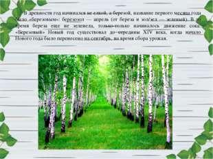В древности год начинался не елкой, а березой, название первого месяца года б