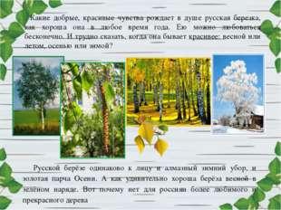 Какие добрые, красивые чувства рождает в душе русская березка, как хороша она