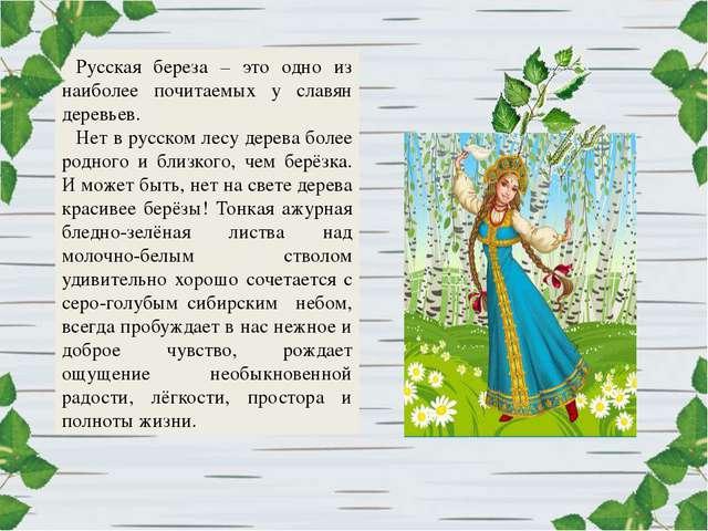 Русская береза – это одно из наиболее почитаемых у славян деревьев. Нет в рус...