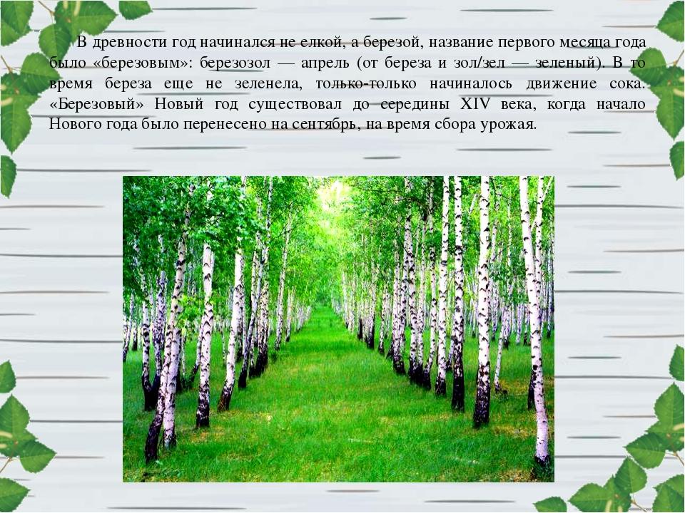 В древности год начинался не елкой, а березой, название первого месяца года б...