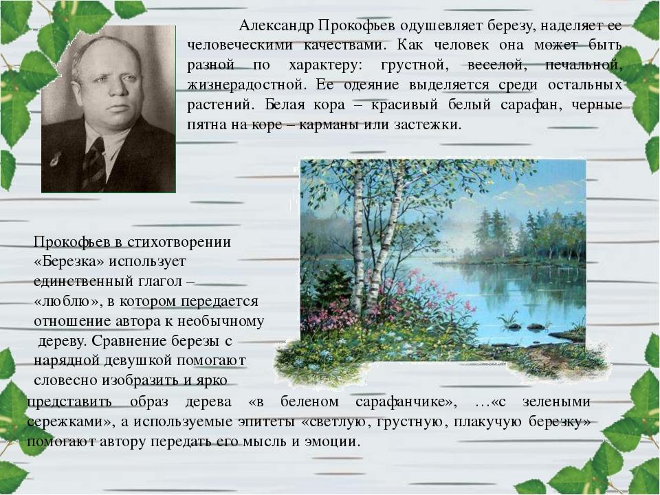 Александр Прокофьев одушевляет березу, наделяет ее человеческими качествами....