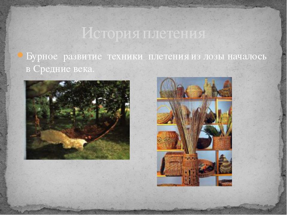 Бурное развитие техники плетения из лозы началось в Средние века. История пле...