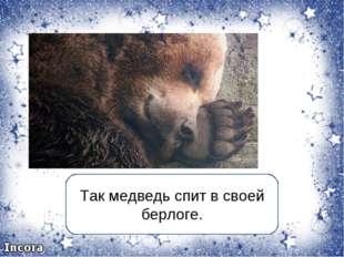 Так медведь спит в своей берлоге.