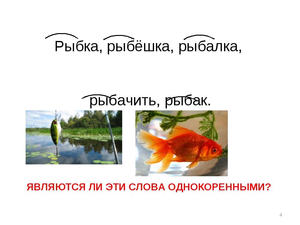 Рыбка, рыбёшка, рыбалка, рыбачить, рыбак. * ЯВЛЯЮТСЯ ЛИ ЭТИ СЛОВА ОДНОКОРЕНН...