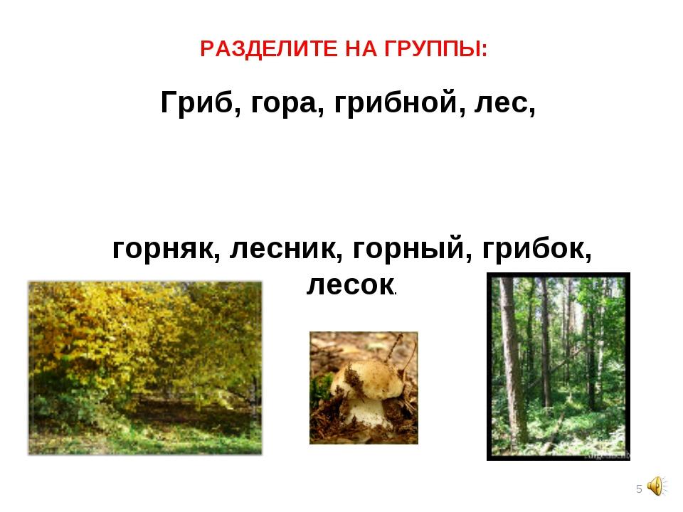 * Гриб, гора, грибной, лес, горняк, лесник, горный, грибок, лесок.  РАЗДЕ...