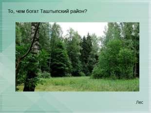 То, чем богат Таштыпский район? Лес