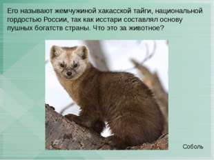 Его называют жемчужиной хакасской тайги, национальной гордостью России, так к