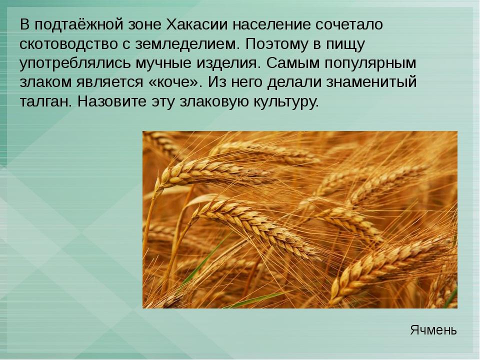 В подтаёжной зоне Хакасии население сочетало скотоводство с земледелием. Поэт...