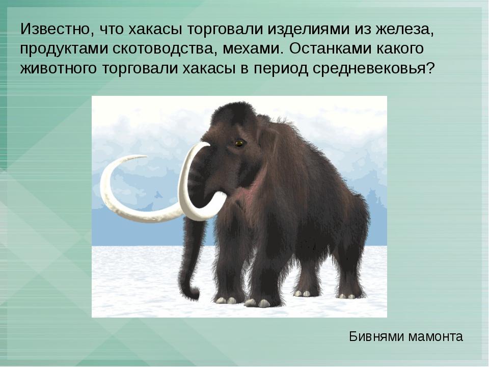 Известно, что хакасы торговали изделиями из железа, продуктами скотоводства,...