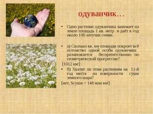 Одно растение одуванчика занимает на земле площадь 1 кв. метр и даёт в год ок