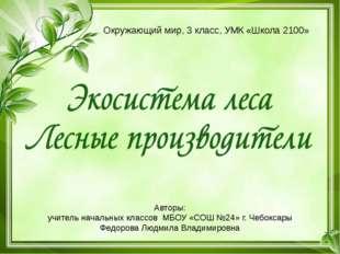 Авторы: учитель начальных классов МБОУ «СОШ №24» г. Чебоксары Федорова Людмил