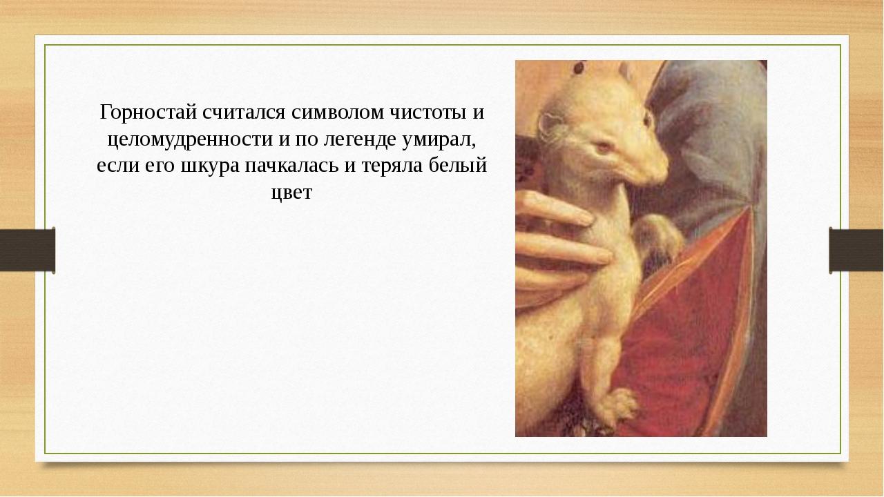 Горностай считался символом чистоты и целомудренности и по легенде умирал, ес...