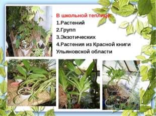 В школьной теплице: 1.Растений 2.Групп 3.Экзотических 4.Растения из Красной