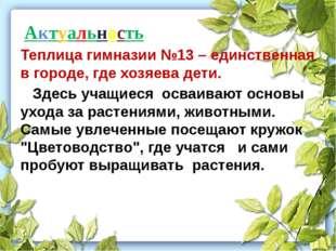 Актуальность Теплица гимназии №13 – единственная в городе, где хозяева дети.