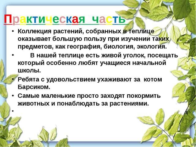 Практическая часть Коллекция растений, собранных в теплице оказывает большую...