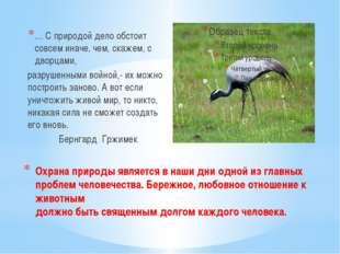 Охрана природы является в наши дни одной из главных проблем человечества. Бер
