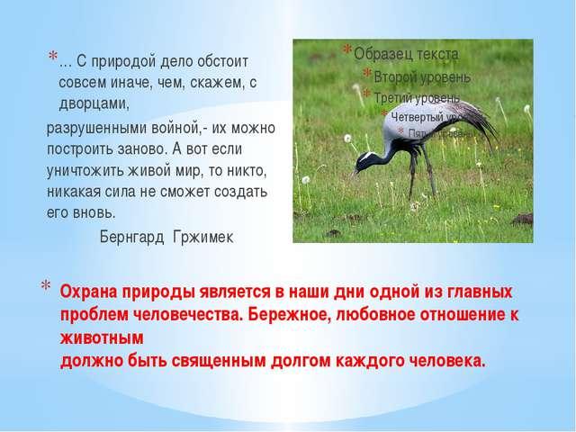 Охрана природы является в наши дни одной из главных проблем человечества. Бер...