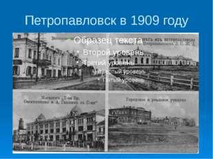 Петропавловск в 1909 году