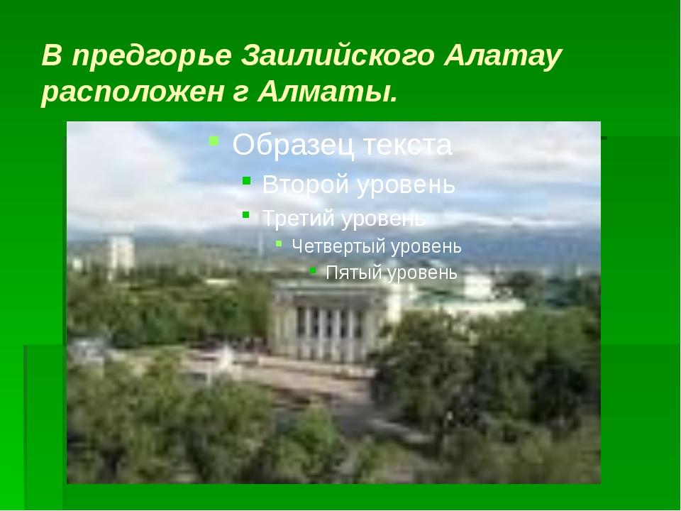 В предгорье Заилийского Алатау расположен г Алматы.