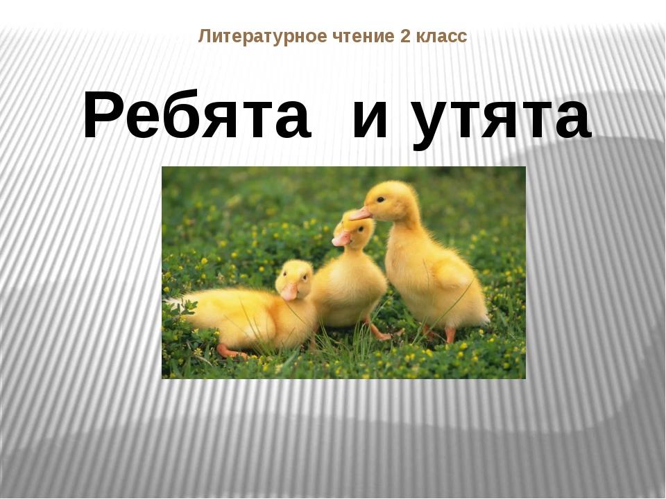 Литературное чтение 2 класс Ребята и утята
