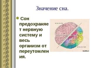 Значение сна. Сон предохраняет нервную систему и весь организм от переутомлен