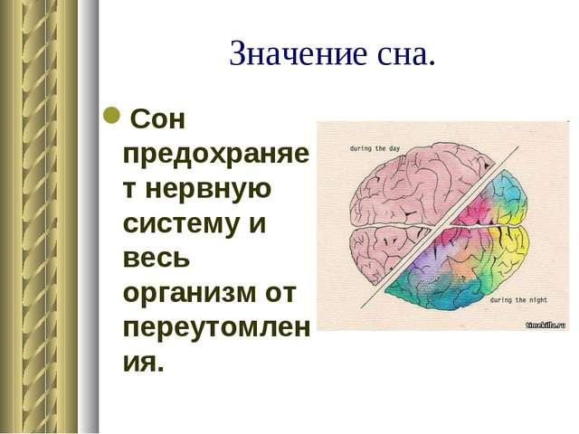 Значение сна. Сон предохраняет нервную систему и весь организм от переутомлен...