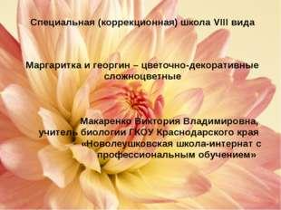 Особенности выращивания маргаритки Маргаритка влаголюбива, светолюбива, моро