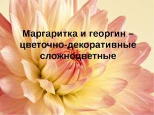 Строение растения маргаритки Корневая система Стебель Лист Плод Соцветие моч