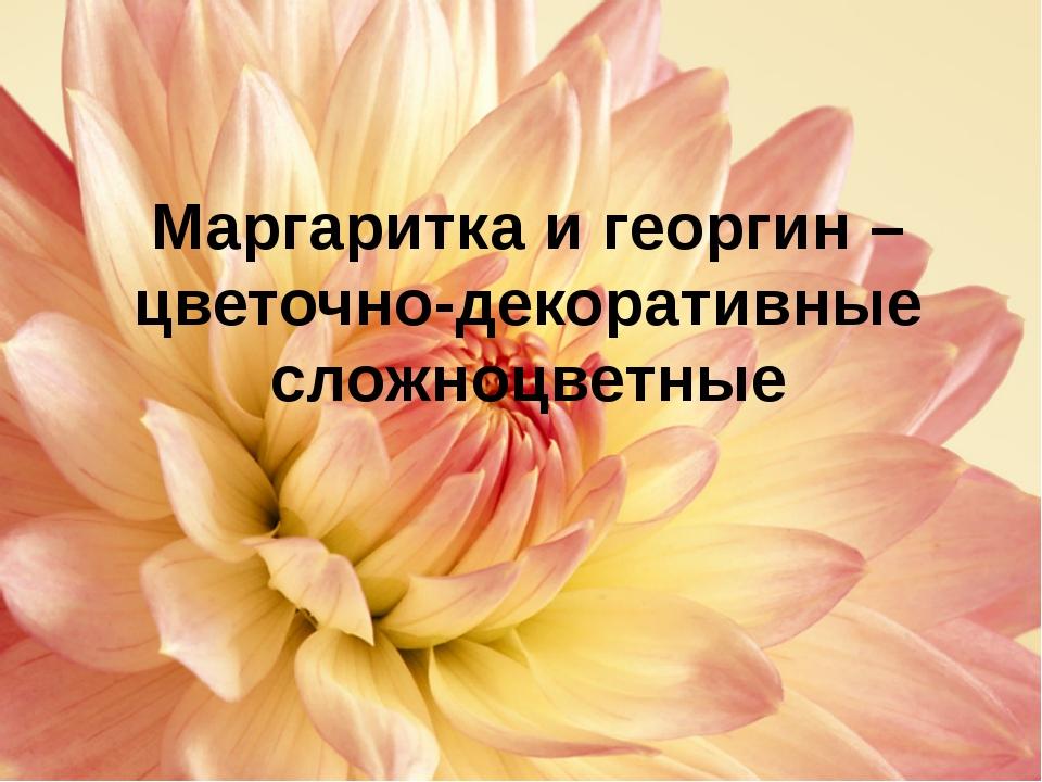Строение растения маргаритки Корневая система Стебель Лист Плод Соцветие моч...