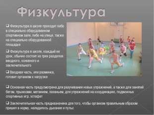 Физкультура в школе проходит либо в специально оборудованном спортивном зале