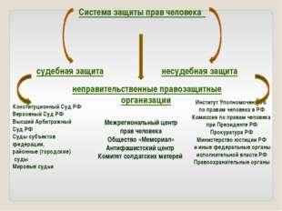 Система защиты прав человека Институт Уполномоченного по правам человека в РФ