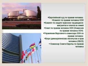 Европейский суд по правам человека Комитет по правам человека ООН Комитет по