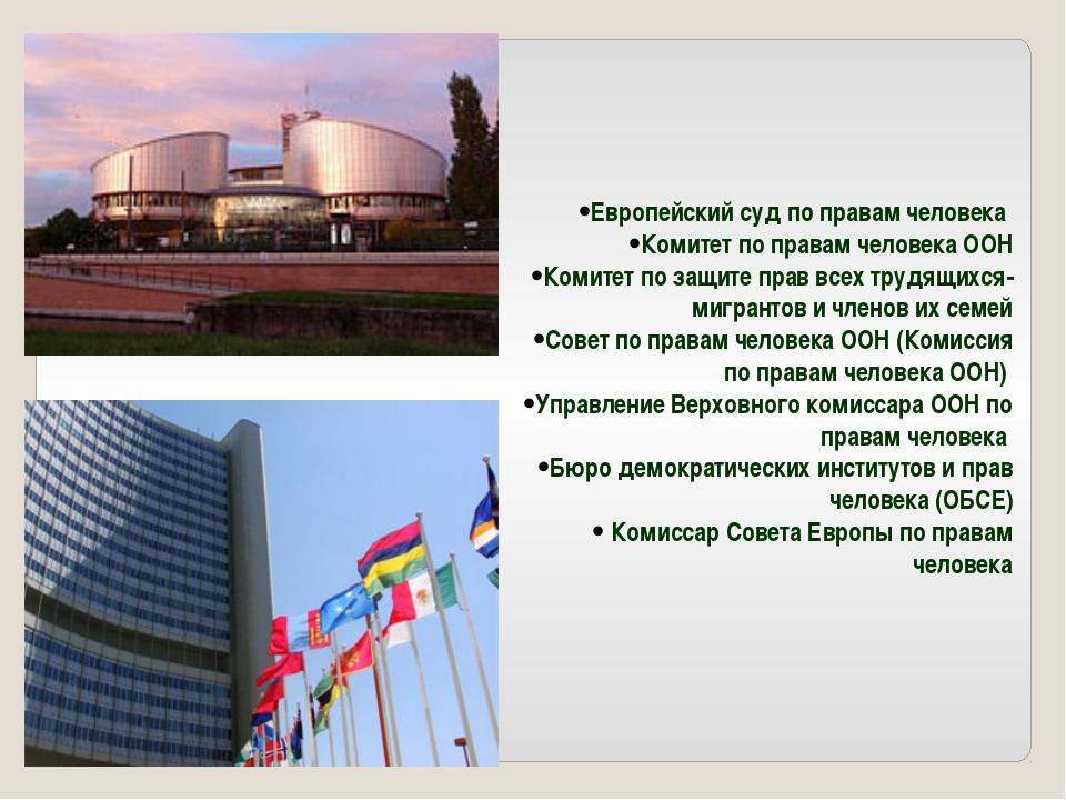 Европейский суд по правам человека Комитет по правам человека ООН Комитет по...